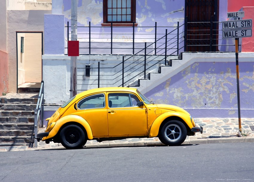 Yellow Beetle. FT 1417