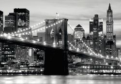 Manhattan Bridge . FTS 0199