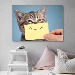 Πίνακας σε καμβά happy cat closeup portrait with funny smile on cardboard
